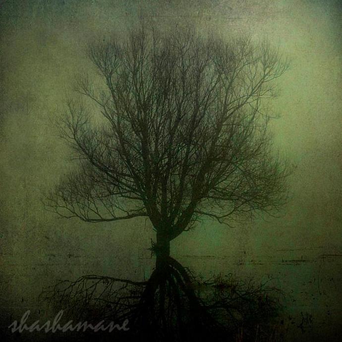 "Inbetween  dreams and reality - haunting, spooky, eerie, dark 8x8"" fine art"