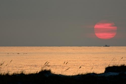 Destin Florida With A Fishing Boat Under Setting Sun off Destin
