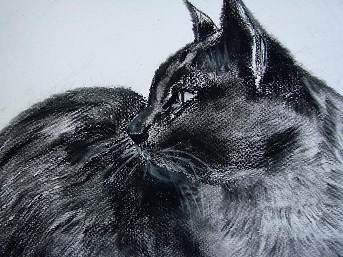 Gywnne Girl - Original Charcoal Drawing