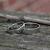 White Gold Hammered Wedding Band Set