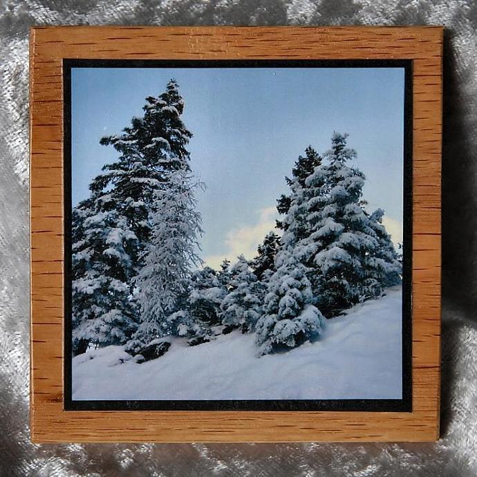 Snow Trees drink coaster