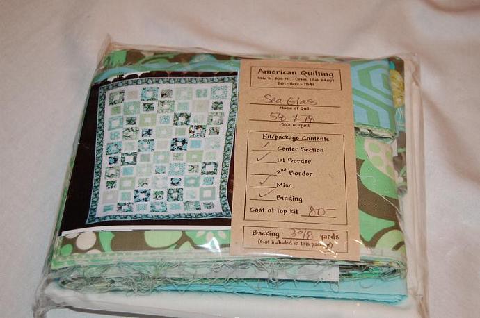 DESTASH SALE of Designer Fabrics - Amy Butler Quilt Kit