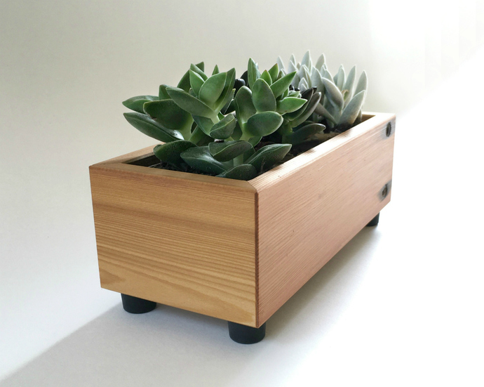 Wood Succulent Planter