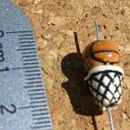 Featured item detail 134771 original