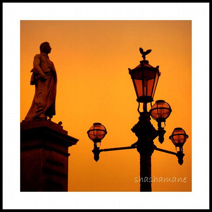 Sunrise birdwatching 5x5 photography print, silhouettes at dawn, Cracow