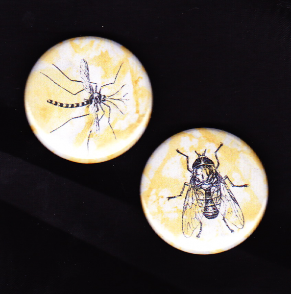 Most Popular Summer Insects Magnets