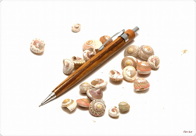 CGW Wooden Mechanical Pencil_Spalted Oak