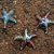 Raku Pottery Clay Starfish (Large)
