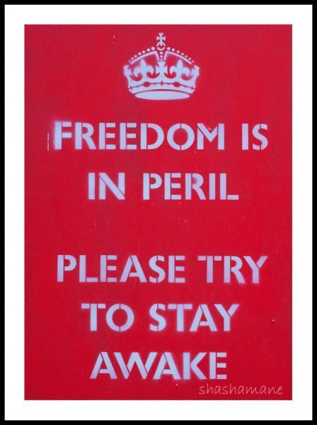 Freedom is in peril 7x5 fine art photography print, pastiche graffiti