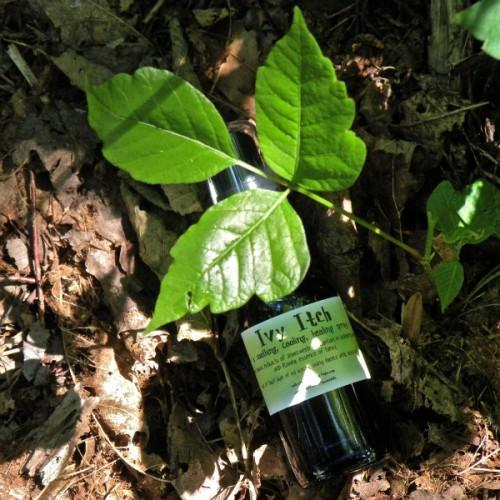 Poison Ivy Spray - a Handmade Herbal