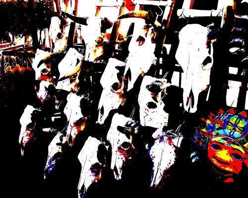 Cow Skulls in Santa Fe