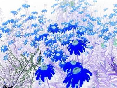 Gallery hero zoom 1499685 original