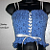 Blue Lace Corset/Camisole
