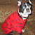 Paw Print Dog Shirt White Fleece M, L