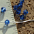 Saphire Swarovski Cyrstals 4mm Bicone 9-2182