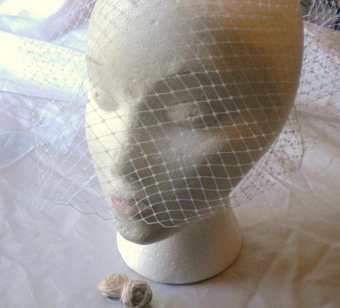 Simply elegant full coverage birdcage veil