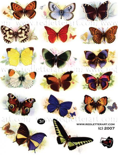 Butterflies  Collage Sheet #1