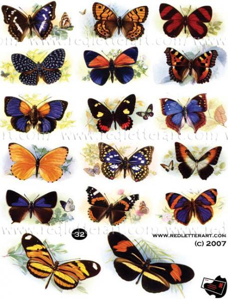Butterflies  Collage Sheet #2