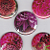 Pink Flowers  Refrigerator Magnets
