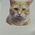 Orange Tiger Cat Ceramic Waterslide Decals D10-54