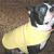 Fleece Dog Coat Vest Reversible Blue Superstar