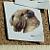 Wheaton Terrier Ceramic Waterslide Decals (D9-46)