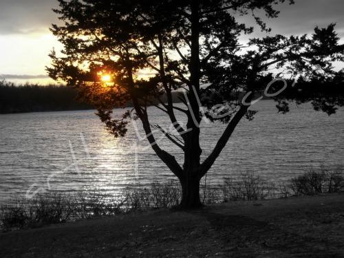 'Twilight Lake' ABB Original Art & Photography Wallpaper