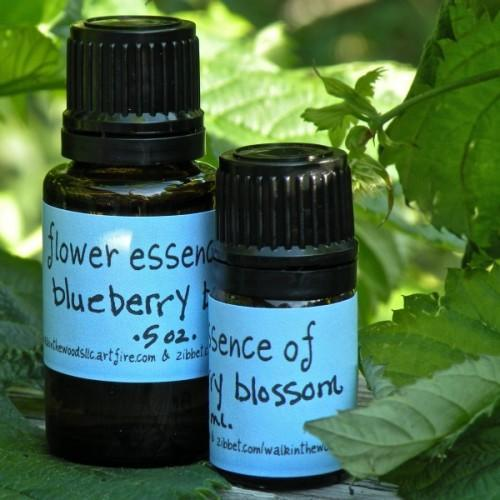 Blueberry Blossom Flower Essence - .5 ounce