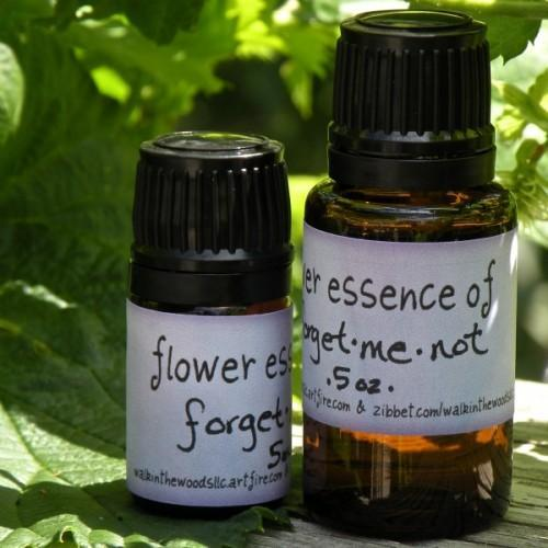 Forget-Me-Not Flower Essence, .5 ounce Bottle