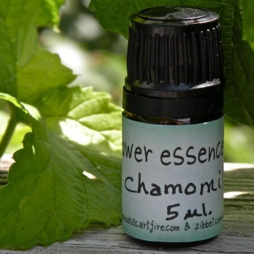 Chamomile Flower Essence - 5 ml. - Handmade