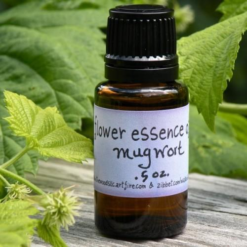 Handcrafted Mugwort Flower Essence - .5 ounce Bottle