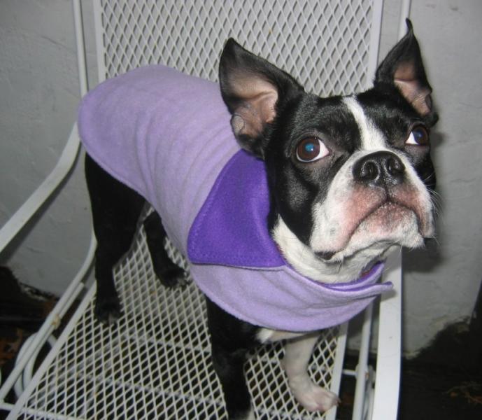 Purple Dog Coat Reversible Fleece