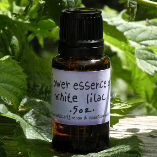 White Lilac Flower Essence - Handmade - .5 ounce