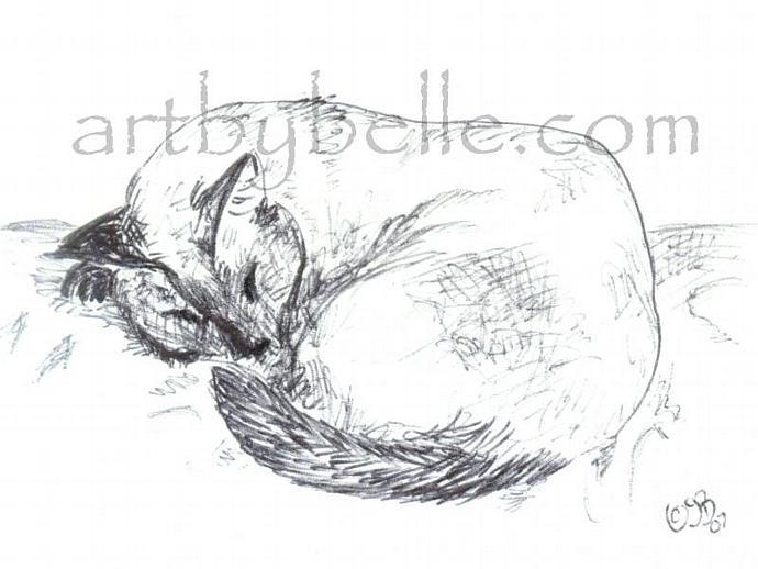"""Sleeping Siamese"" Cat Art Print"