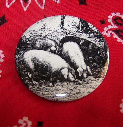 Pigs - Antique Etching - Button