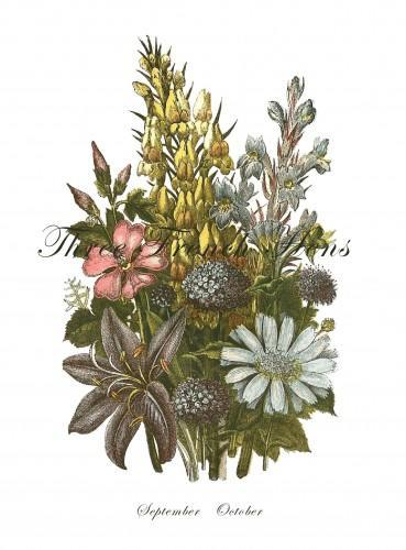 Victorian Autumn Botanical Bouquet Stationery Note Flat Set