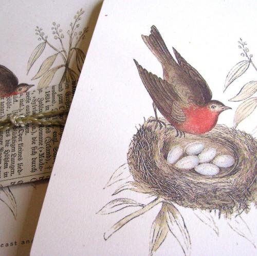 Victorian Robin Red Breast and Her Nest Stationery Note Flat Set