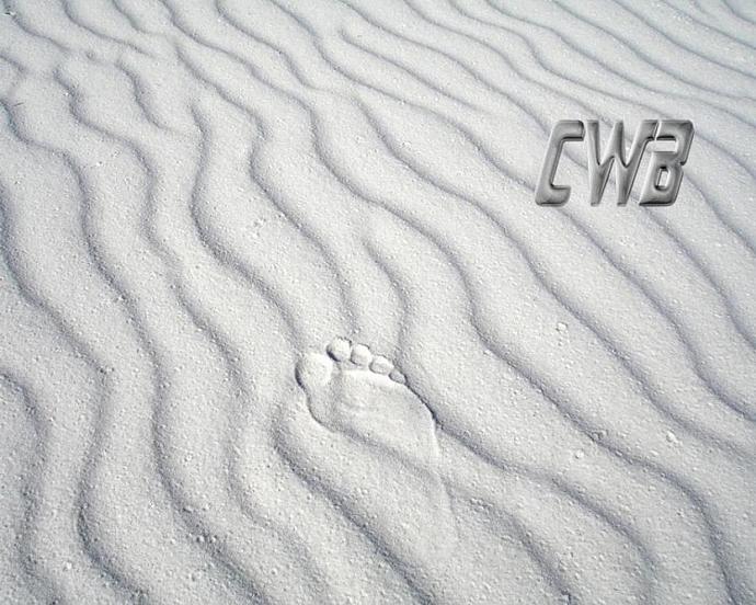 Beach CrossWalk Gulf Coast art print