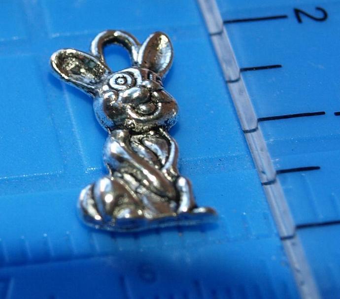 Bunny Charms 12-005
