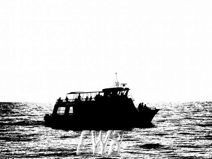 Sail On Gulf Coast art print
