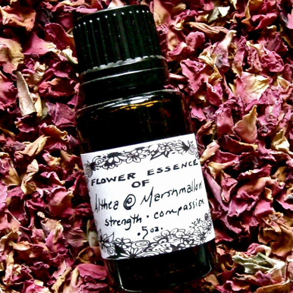 Flower Essence Set of Three - Healing Love