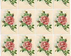 Item collection 2680638 original