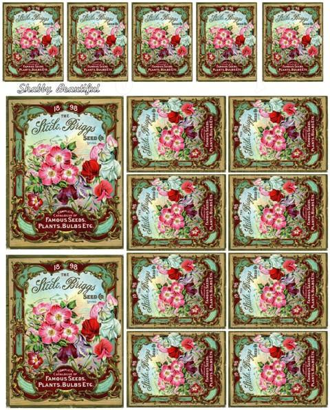 Shabby chic  digital collage sheets for scrapbook and cards DC16 Flower Seed