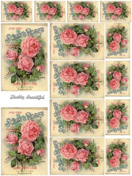 Shabby chic  digital collage sheets for scrapbook and cards DC17 Pink Roses Seed