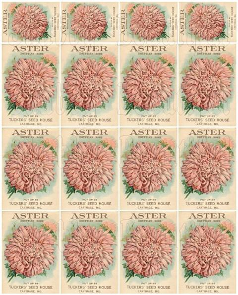 Shabby chic  digital collage sheets for scrapbook and cards DC26 Pink Flower