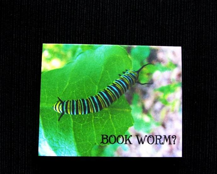 Book Worm Magnetic Bookmark