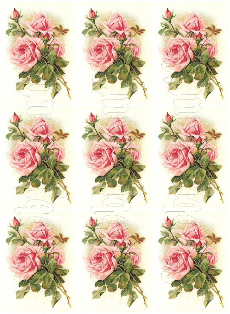 shabby chic pink roses digital collage by shabbybeautiful on zibbet. Black Bedroom Furniture Sets. Home Design Ideas