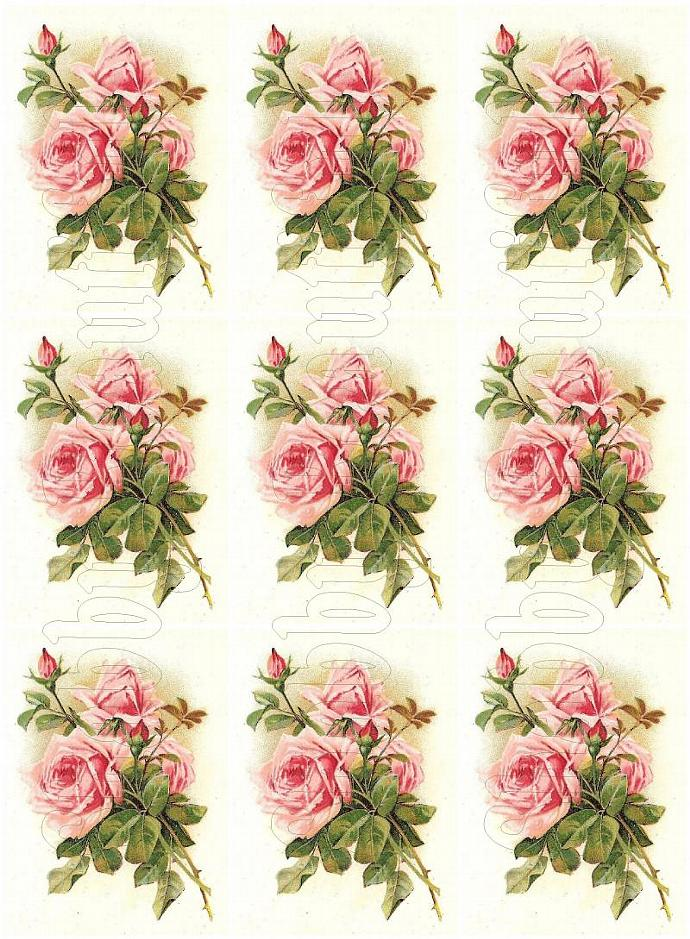 Shabby chic Pink Roses  digital collage sheets for scrapbook and cards Journal