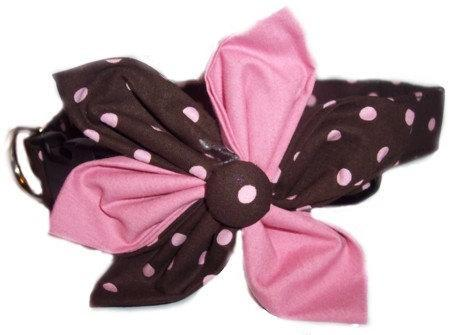 Brown Pink Polka Dots blossom flower bow dog cat puppy pet collar all sizes