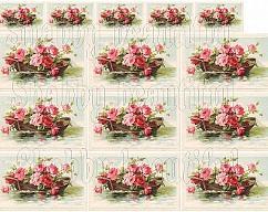 Item collection 2705496 original